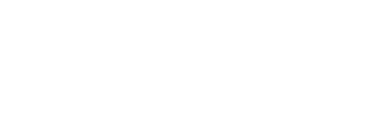 Hausita
